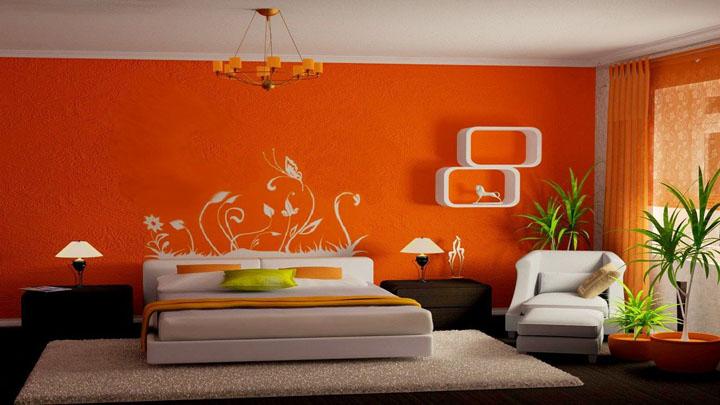 Выбор краски для стен фото5