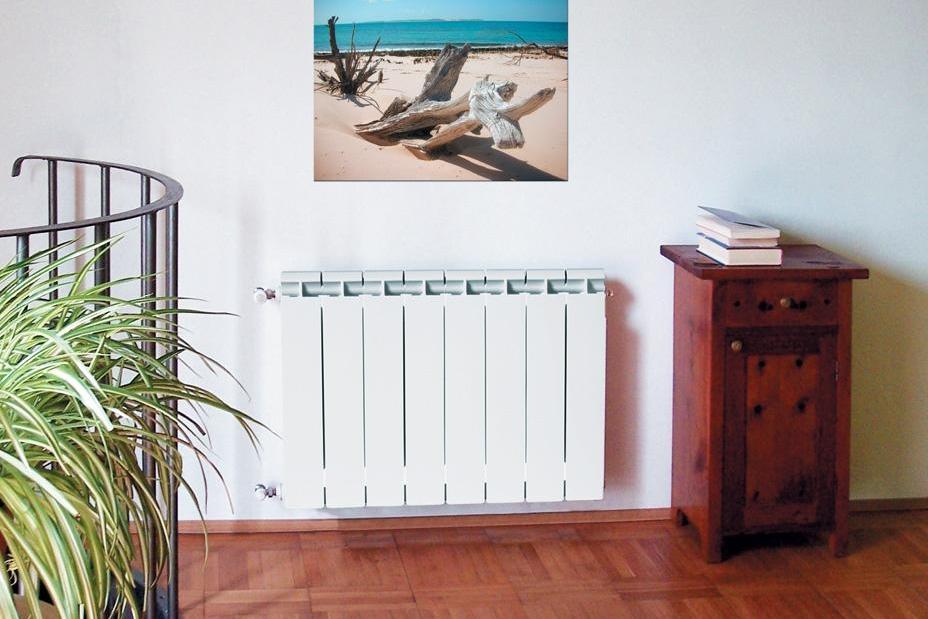 Биметаллические радиаторы отопления фото2
